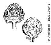 artichoke. sketch of food...   Shutterstock .eps vector #1833224041