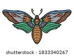 Death's Head Moth Colorful...