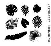 tropical palm leaves silhouette ... | Shutterstock .eps vector #1833481687