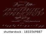 handwritten script cursive...   Shutterstock .eps vector #1833569887