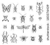 bug | Shutterstock .eps vector #183376439