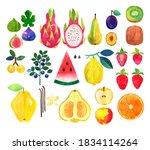 fruit. figs  dragon fruit  pear ...   Shutterstock . vector #1834114264