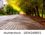 Autumn Sidewalk With Trees And...