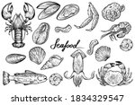 seafood set  hand drawn vector   Shutterstock .eps vector #1834329547
