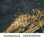 Photo Of Black Charcoal From...