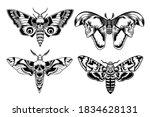 moth with skull set. scary... | Shutterstock .eps vector #1834628131