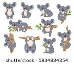 cute cartoon koala. lazy koalas ... | Shutterstock .eps vector #1834834354
