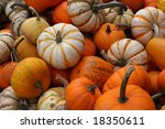 colorful gourds | Shutterstock . vector #18350611
