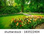 Garden In Keukenhof  Tulip...