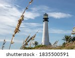 Cape Florida Lighthouse With...
