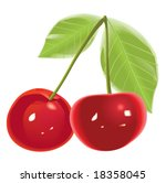 two cherries isolated on white... | Shutterstock .eps vector #18358045