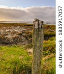 Old Weathered Wooden Pole In...