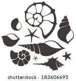 Shell. Set - stock vector