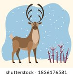 big north deer stand on... | Shutterstock .eps vector #1836176581