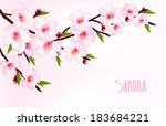 spring background of a... | Shutterstock .eps vector #183684221
