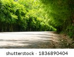 tunnel of green bamboo forest...   Shutterstock . vector #1836890404