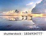 Diem Dien Beach  Thai Thuy...