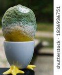 Side View Of A Mouldy Lemon ...