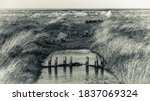 Tinted Monochrome Image Of An...