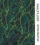 botanical garden inspired by... | Shutterstock . vector #1837137994