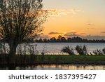 During Sunrise At Lake...