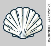 marine seashell  sea shell ... | Shutterstock .eps vector #1837490404