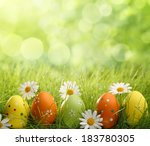 Easter Eggs In Green Grass