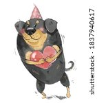 Rottweiler Dog Postcard With...