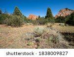 Beautiful Desert Scenery In The ...