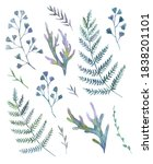 set with watercolor painted... | Shutterstock . vector #1838201101