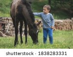 Boy Playing Around Wit A Horse...