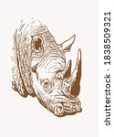 vintage portrait of rhino  ... | Shutterstock .eps vector #1838509321