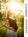 portrait of a pregnant  | Shutterstock . vector #183881471