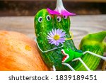 Funny Figure From Cucumbers In...