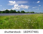 Beautiful Summer Landscape Of...