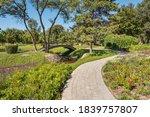 Gardens  Grasslands  Trees And...