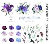 violet  purple and burgundy...   Shutterstock .eps vector #1840051651
