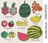 bright tropical fruit set in... | Shutterstock .eps vector #184009235
