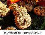 A Table Full Of Peanut Pumpkins ...