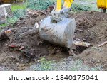 Excavator Uprooting Trees In...