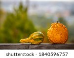 Ornamental Pumpkins On A Wooden ...