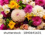 Beautiful Floral Background...