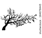vector tree with branches in... | Shutterstock .eps vector #184078445