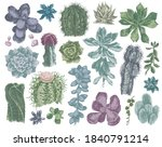 hand drawn cactuses and... | Shutterstock .eps vector #1840791214