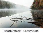 Logs In A Foggy Lake At Dawn. ...