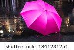 Pink Umbrella After The Rain. ...