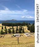Norfolk Island With Pines And...