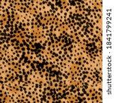 Realistic Furry Cheetah Animal...