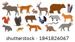 forest animals isolated on... | Shutterstock .eps vector #1841826067