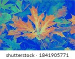 Wilted Autumn Leaves Under...